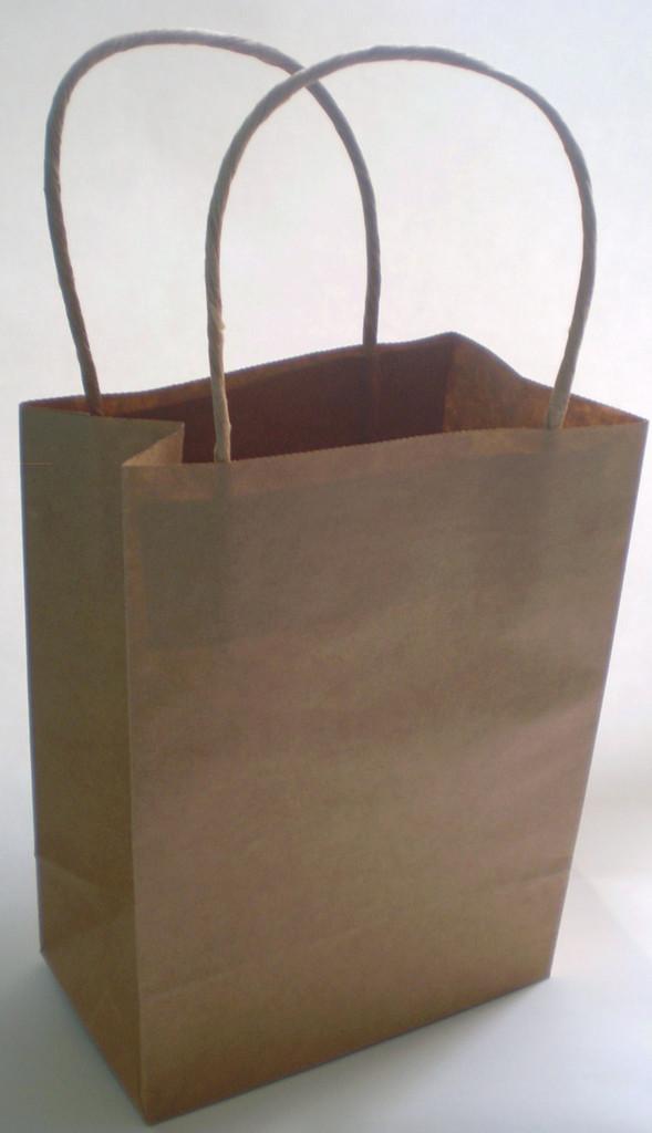 Craft DIY Gift Bags - 4 Pack