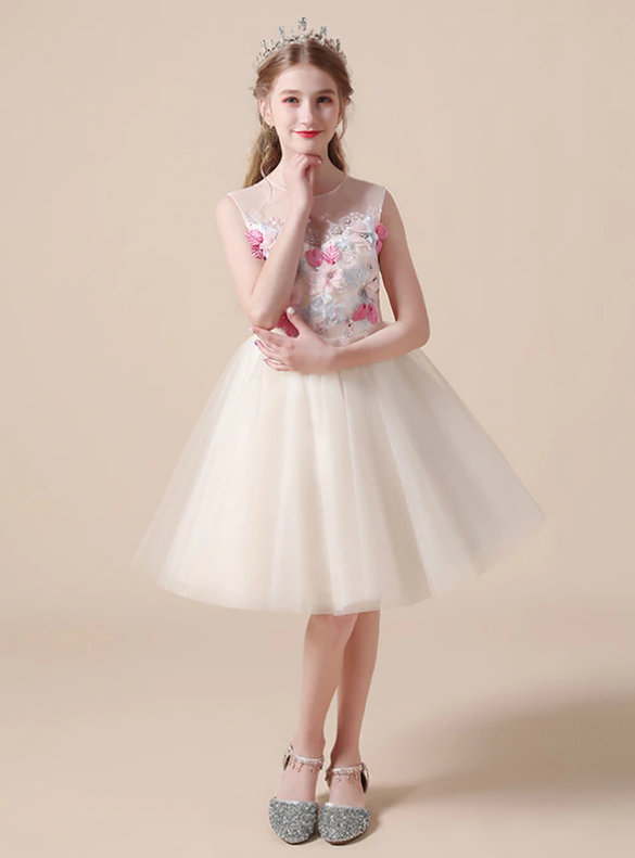 Champagne Tulle Colorful Appliques Flower Girl Dress