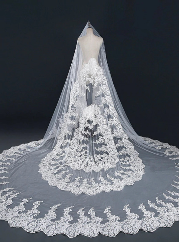 White Tulle Lace Long Luxury Wedding Veils