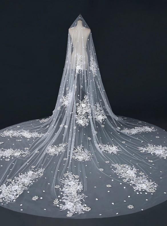Beige White Tulle Appliques Wedding Veils