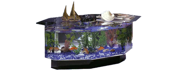 680 Stretched Octagon Aquarium Coffee Table