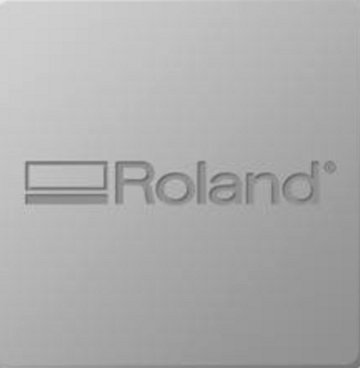 Roland BT-12 Garment Ink - Yellow