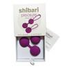Shibari Pleasure Vagina balls Set