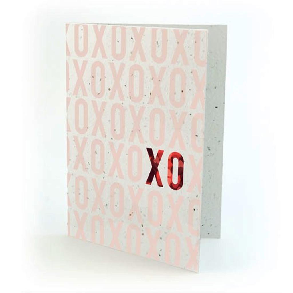 seed card - xo