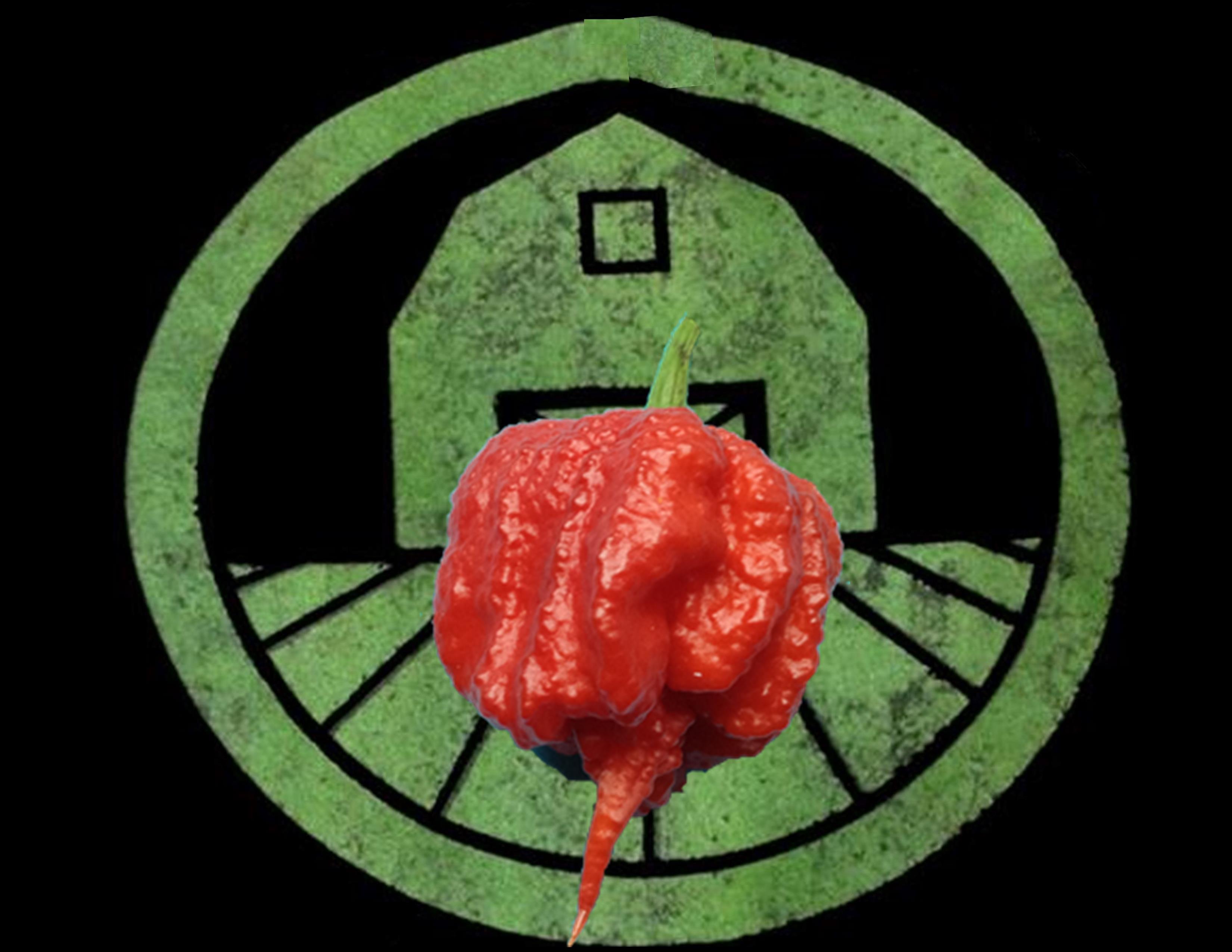 7 Pot Primo Pepper | Tyler Farms