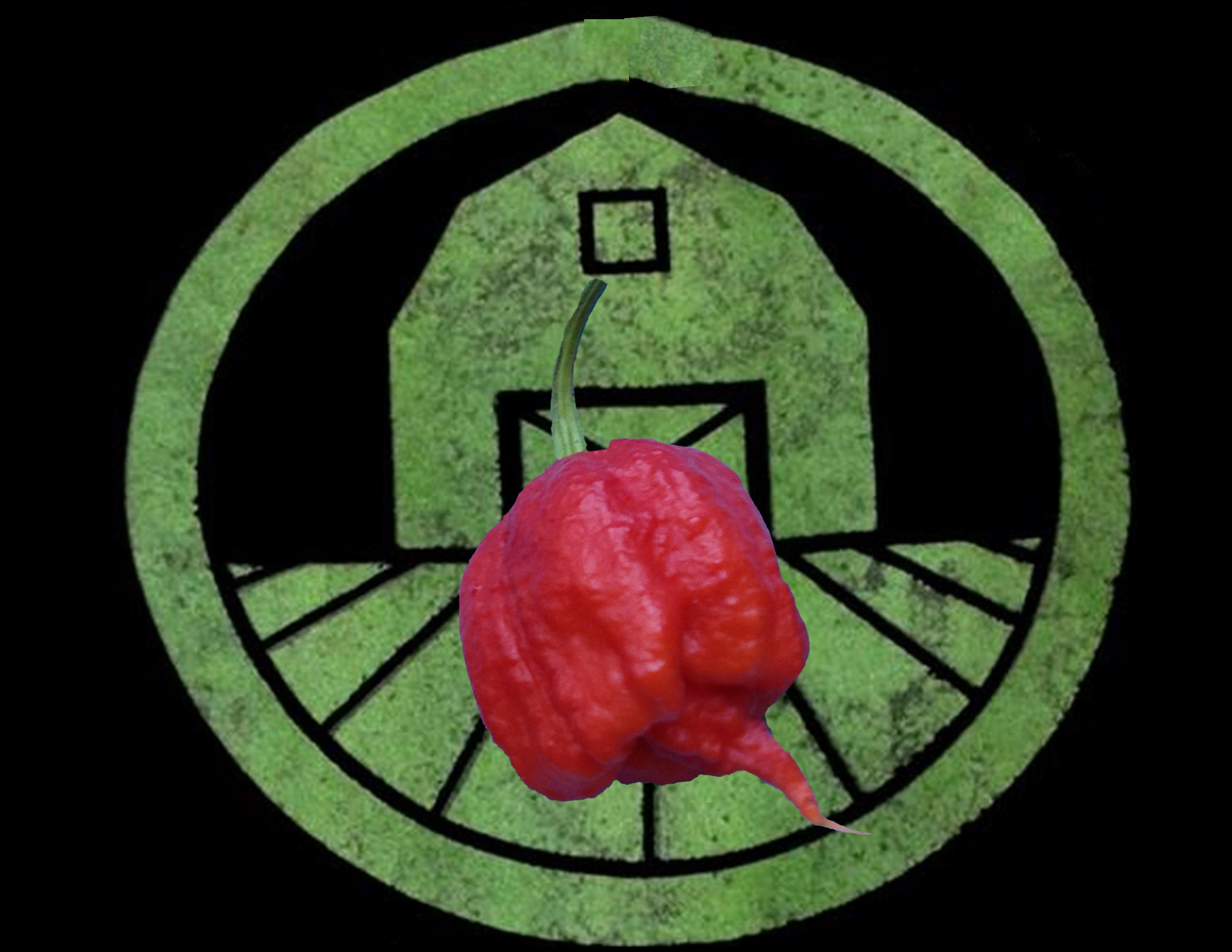 carolina-reaper-hottest-pepper-in-the-world-tyler-farms-organic-seed-company-1-.jpg