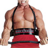 Body Solid Bicep Bomber (BB23) (