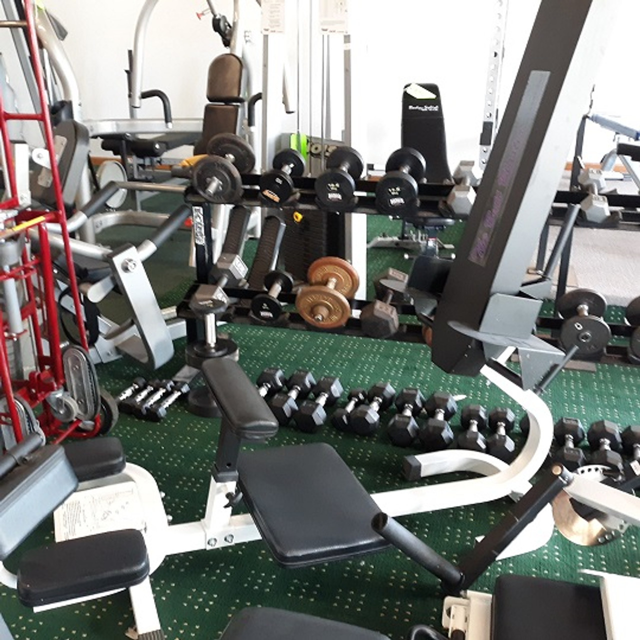 2f4ca50b500d3 The ButtBlaster Glute machine for sale at Big Fitness