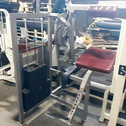 Cybex Classic Back Extension machine