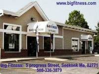 1 Day Sale at Big Fitness!  Stairmaster SC916 & Octaine Q37 Elliptical $995 Each