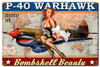 """P-40  WARHAWK  PIN-UP""   METAL  SIGN"