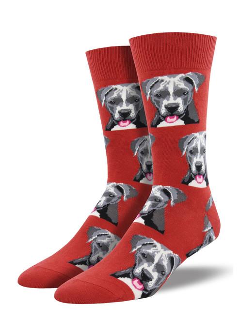 Pitbull Men's Socks Red