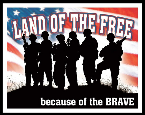 BECAUSE OF THE BRAVE ---METAL  SIGN
