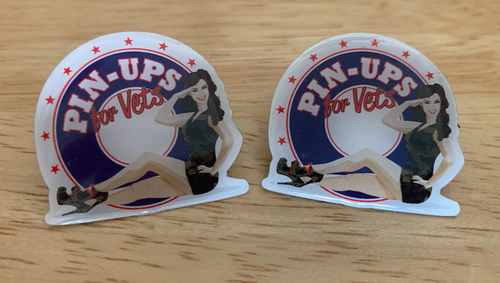 """PIN-UPS  FOR  VETS""  LOGO  PIN"