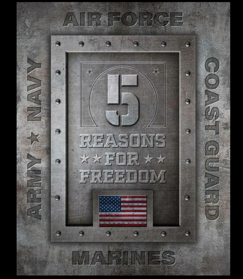 5  REASONS  FOR  FREEDOM----  METAL  SIGN