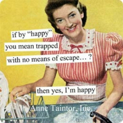 New Anne Taintor 40 Retro Fun Retro Humor Paper napkins party gift  - TRAPPED