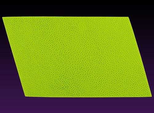 Goosebumps Impression Mat Silicone mold