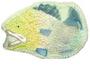 Plastic Fish Cake Pan