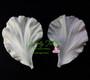 Hibiscus Petal Veiner Gumpaste Set