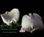 David Austin ( Kiera ) Rose Petal Veiner Gumpaste Set