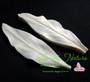 Calla Lily Large Leaf Veiner Gumpaste Set