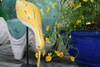 "Decorative Wooden Eating Egret Bird 14"" - Yellow Coastal Decor | #Ort1704434y"