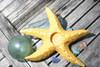 "Starfish Candle Holder 9"" - Rustic Coastal Yellow | #ata1801122y"