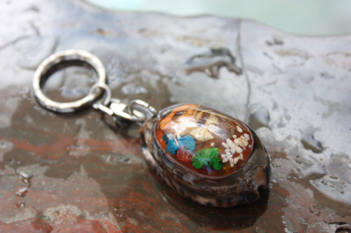 Keychain Seashell w/ Inlay Sea Life #1 - Aloha Keychain