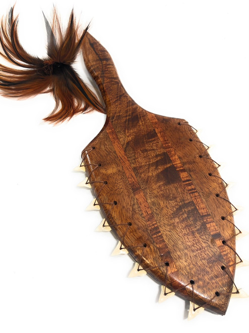 "Curly Koa Lei O Mano War Club 19"" w/ Shark Teeth - Collector  