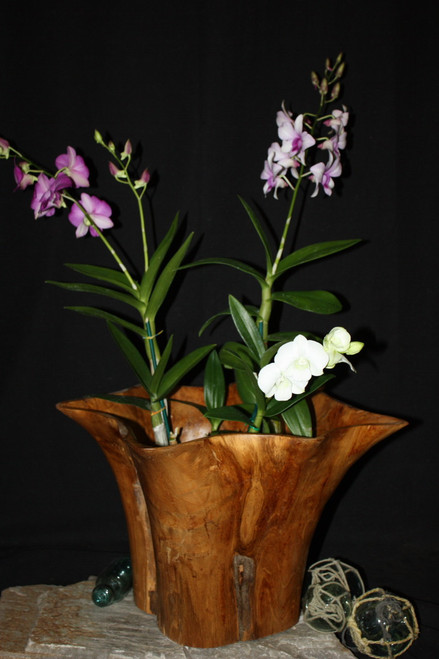 "Rustic Vase Flower Wooden Teak Bowl 16"" x 14"" x 12"" | #hwa224"