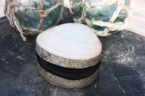 Seashell Keepsake Box Medium - White - Coastal Decor | #sur28006