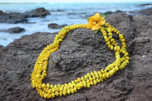 "Lei Pakalana Strand w/ Yellow Hibiscus 18"" - Hawaiian Silk Leis"