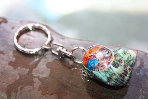 Keychain Seashell w/ Inlay Sea Life #4 - Aloha Keychain