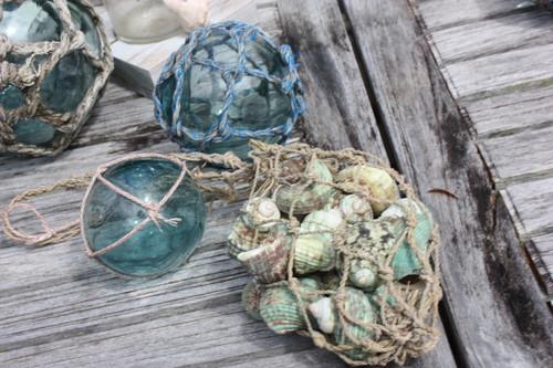 Green Seashell w/ Netting Bag - Coastal Living