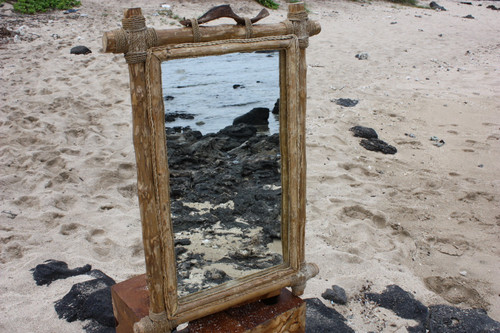"Coffee Tree Rectangular Mirror 18""x28"" - Coastal Living"