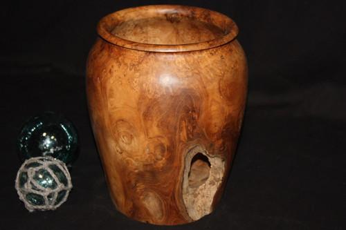"Teak Root Jar 12"" X 10"" - Wooden Bowl Hawaii Collection 3"