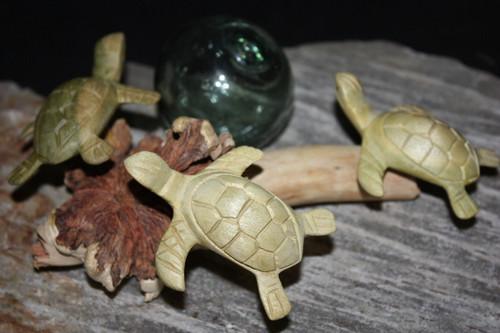 "Sea Turtles Set of 3 w/ Driftwood Base 9""W X 7""D - Carved | #jro01"