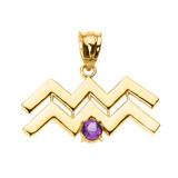 Yellow Gold Aquarius Zodiac Sign February Birthstone Pendant Necklace