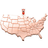 United States Map Rose Gold Pendant Necklace
