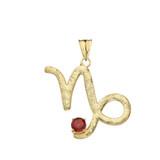 Elegant Satin Finish Capricorn Zodiac Sign January Birthstone Pendant Necklace