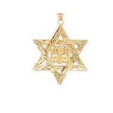 Detailed Star of David (Hebrew) Ten Commandment Book Pendant Necklace in Gold (Yellow/Rose/White) (Small)