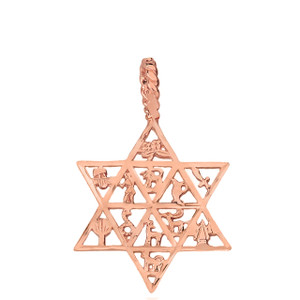 Jewish Star of David Charm 12 Tribes of Israel Pendant Necklace in Solid Gold (Yellow/Rose/White)