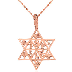 Solid Rose Gold Jewish Star of David Charm 12 Tribes of Israel Pendant Necklace
