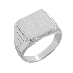 Copy of C Men's Engravable Oval Signet Ring in White Gold