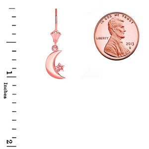Crescent Moon and Star Leverback Earrings in 14K Rose Gold