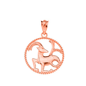 12 Astrological Zodiac Signs Rope Pendant Necklace in Solid Rose Gold