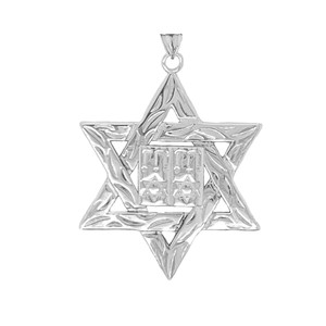 Detailed Star of David (Hebrew) Ten Commandment Book Pendant Necklace in Gold (Yellow/Rose/White) (Large)