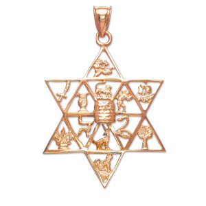 Rose Gold Star of David with Twelve Tribes of Israel Pendant