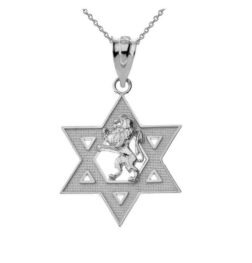 Star of David with Lion of Judah Pendant Necklace in Sterling Silver