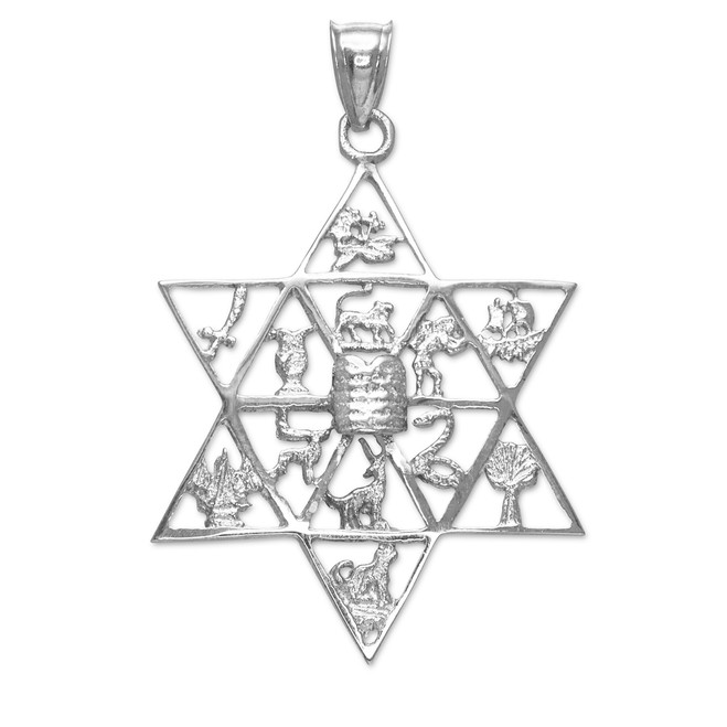 White Gold Star of David with Twelve Tribes of Israel Pendant